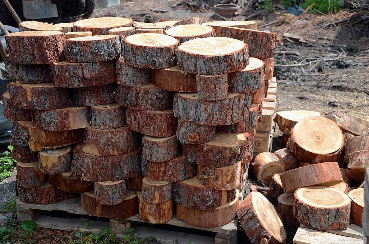 Как из спилов дерева сделать тропинку
