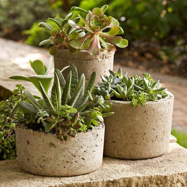 бетонный горшок для цветов